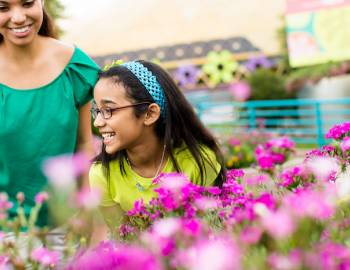 The Epcot® International Flower & Garden Festival